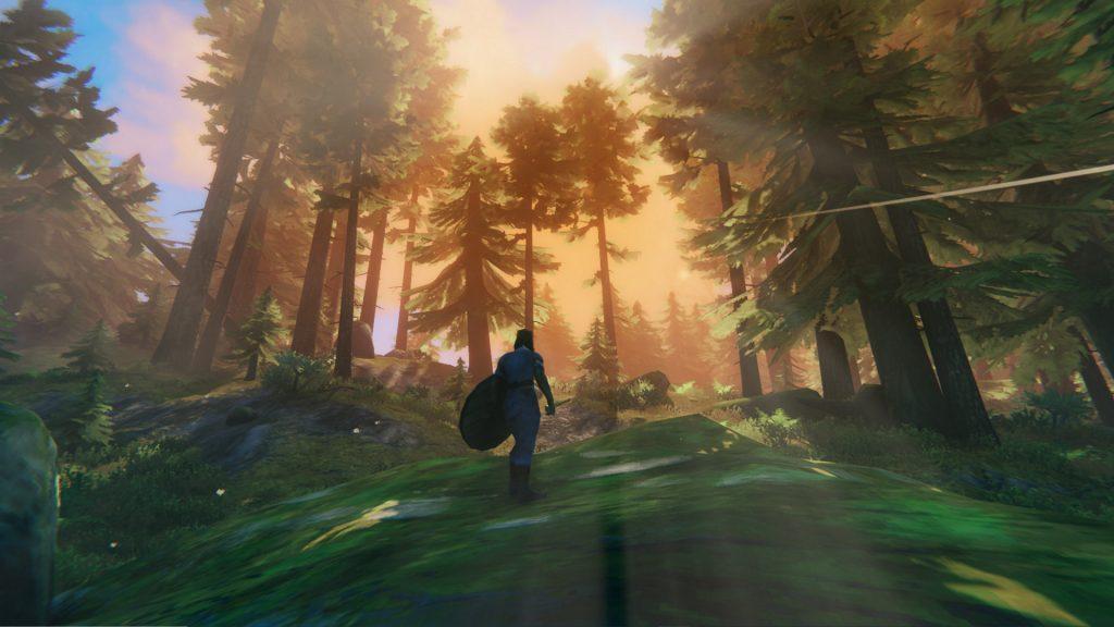تصویری از محیط بازی Velheim در جنگل